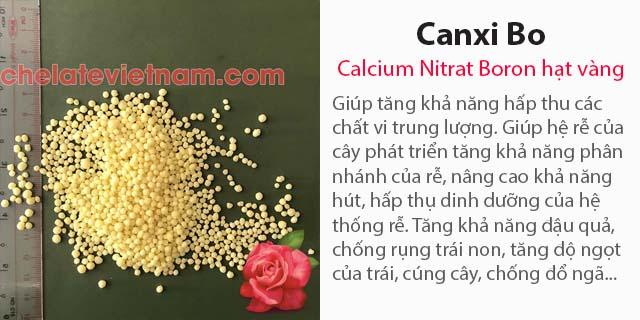 Bán Phân bón Canxi Bo (Calcium Nitrat Boron) hạt vàng