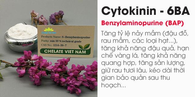 Bán Cytokinin - 6BA 99% (Siêu kích chồi, bật búp) Hormone 6-BAP