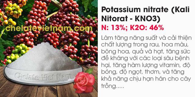 Bán Potassium nitrate (Kali Nitorat - KNO3) N: 13%; K2O: 46%