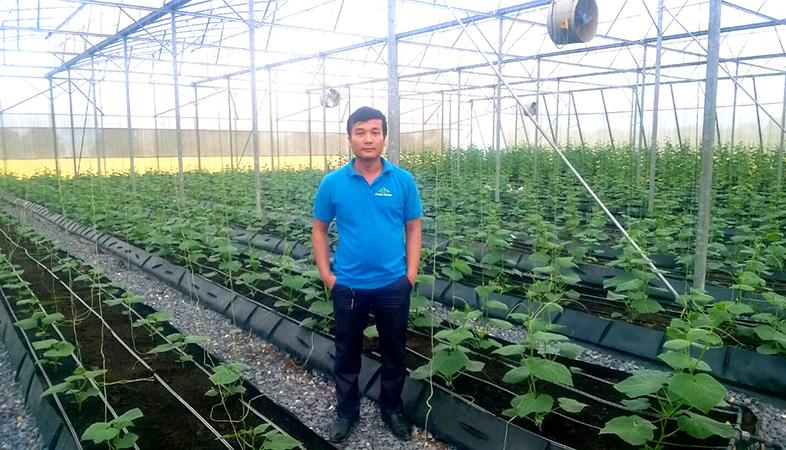 Chelate Việt Nam thăm và tư vấn sử dụng dinh dưỡng vi lượng chelate trên cây rau trồng trên giá thể