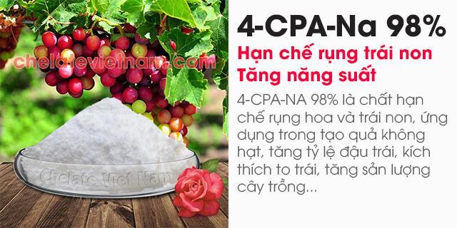 Bán 4-CPA-Na 98% (Hạn chế rụng trái non, tăng năng suất)