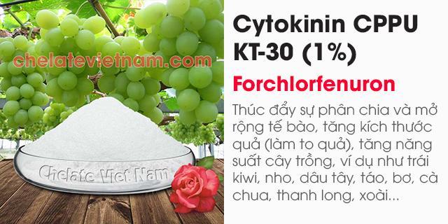 Bán Cytokinin CPPU KT-30 (Tăng kích thước trái cây) Forchlorfenuron