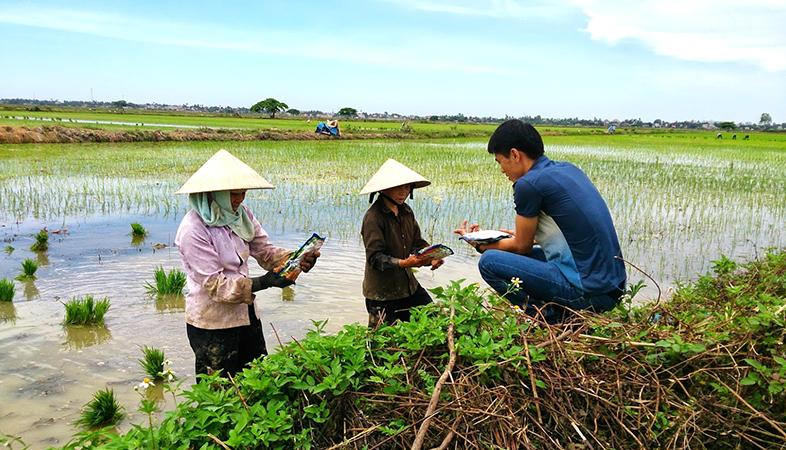 Chelate Việt Nam tặng hợp chất chống rét cho mạ cho người dân Thanh Hóa