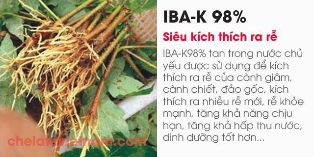 Bán IBA-K 98% (Siêu kích thích ra rễ - tan trong nước)