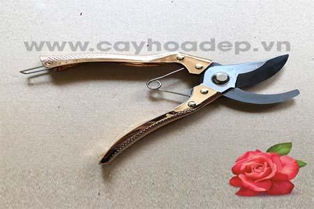 Bán kéo cắt cành mũi cong TOP