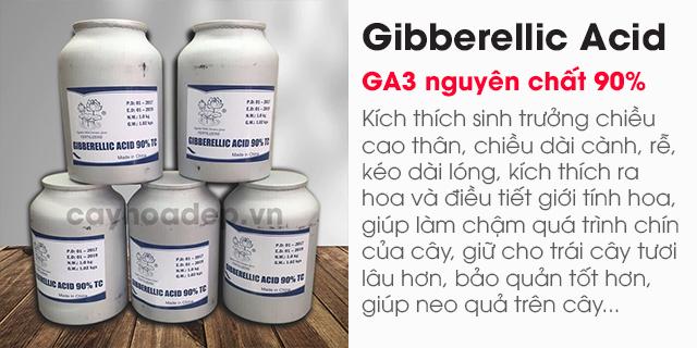 Bán Gibberellic Acid 90% (GA3) nguyên chất