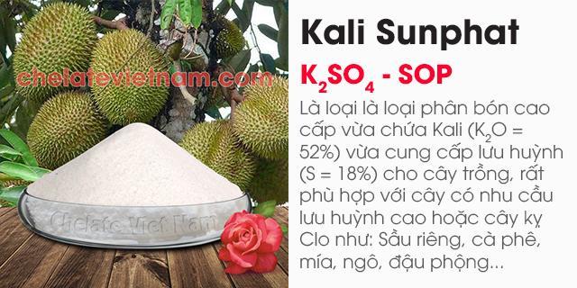 Bán Kali Sunphat (K2SO4 - SOP): K2O = 52%; S = 18%