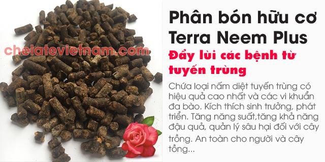 Bán Phân bón hữu cơ Terra Neem Plus - Đẩy lùi các bệnh từ tuyến trùng