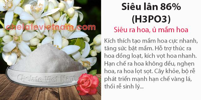 Bán Siêu Lân 86% (H3PO3) Siêu ra hoa, ủ mầm hoa