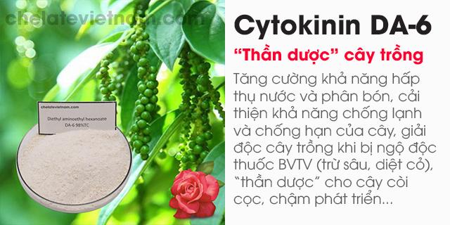 Bán Cytokinin DA-6 98%